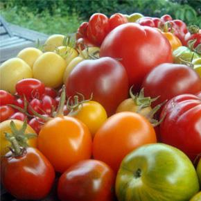 секреты хорошего урожая