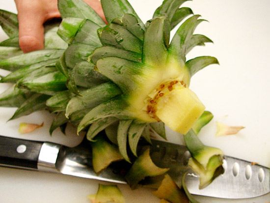 Выращиваем ананас в домашних условиях