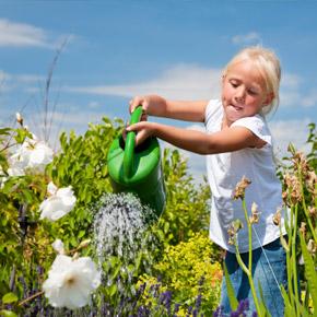 Садовый дизайн. Пермакультура — принципы экологического сада